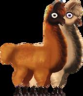 All Creatures Big and Small Llamas