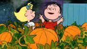 Great-pumpkin still1