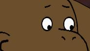 Lioness Francine's Eyes 👀