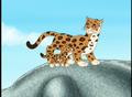 Jaguars (Go Diego Go)