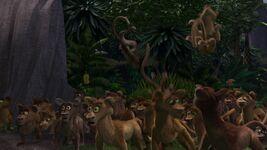 Madagascar-disneyscreencaps.com-8965