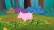 Appu Pig