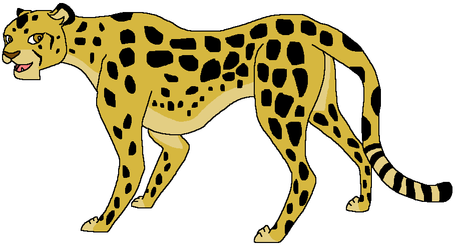 Chezi the Cheetah