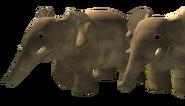 Elephants (Teletubbies)