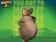 Gloria the Hippo (Madagascar)