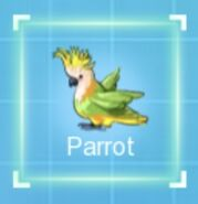IMG dc parrot
