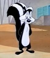 Pepe Le Pew in the Shorts