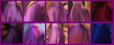 Rapunzel's Butt Collage