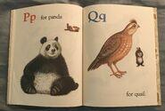 Bunnies' ABC (Little Golden Book) (8)