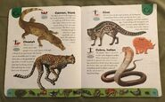 Deadly Creatures Dictionary (4)