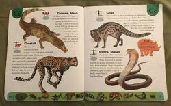 Deadly Creatures Dictionary (4).jpeg