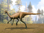 Dm elaphrosaurus