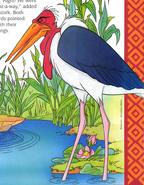 ANFLS Marabou Stork