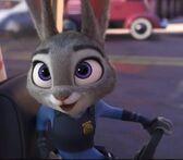 Judy cart