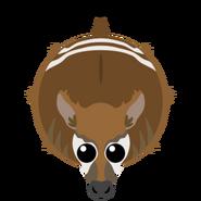 Mopeio Okapi