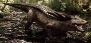 WDRA Desmatosuchus