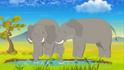 Yoohoo And Friends Elephants