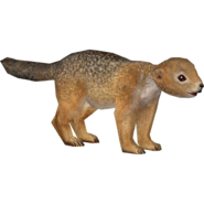 Zoo Tycoon Ground Squirrel