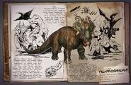 Dossier Pachyrhinosaurus