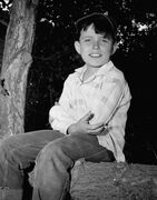 Jerry Mathers Leave It to Beaver 1958