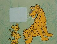 Leopards-from-bamse