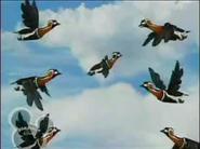 Little Einsteins Geese