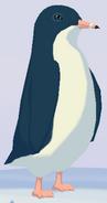 Little Penguin WOZ