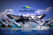 Sea world daytime