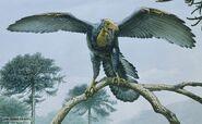 Archaeopteryx 12