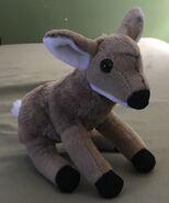 Ashley the Mule Deer Fawn