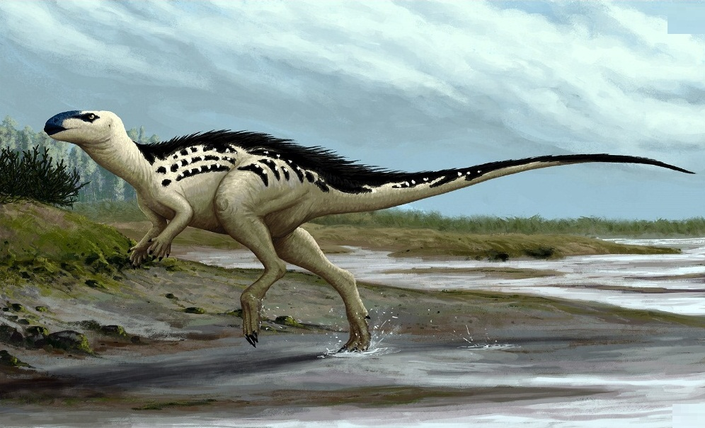 Burianosaurus