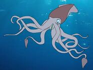 Rileys Adventures Giant Squid