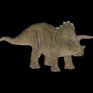 Triceratops WTJW