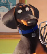 Buddy in The Secret Life of Pets-0