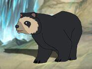 Rileys Adventures Andean Bear