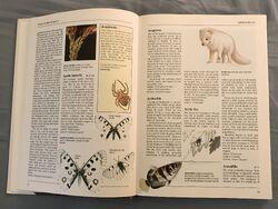 The Kingfisher Illustrated Encyclopedia of Animals (8).jpeg