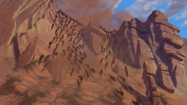 Wildebeests Stampede