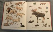 8- An Animal Alphabet (7)