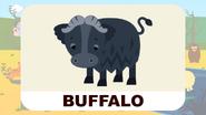 BluePhant Buffalo