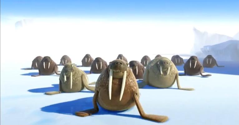 Walrus Leader