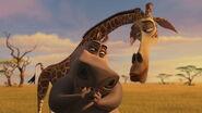 Madagascar2-disneyscreencaps.com-9340