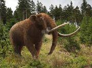 Mastodon Facts.jpg