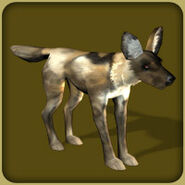 African Wild Dog (Blue Fang)