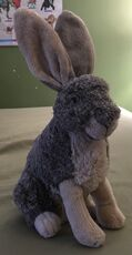 Hallelujah the Hare
