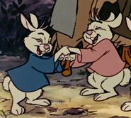 Rabbits hurray 8