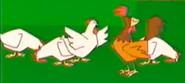 Stanley Chickens