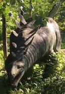 Stegosaurus-boraszoo