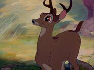 Bambi Adult