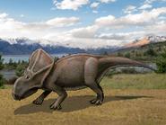 Dm protoceratops