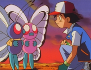 Ash bids farewell to Butterfree